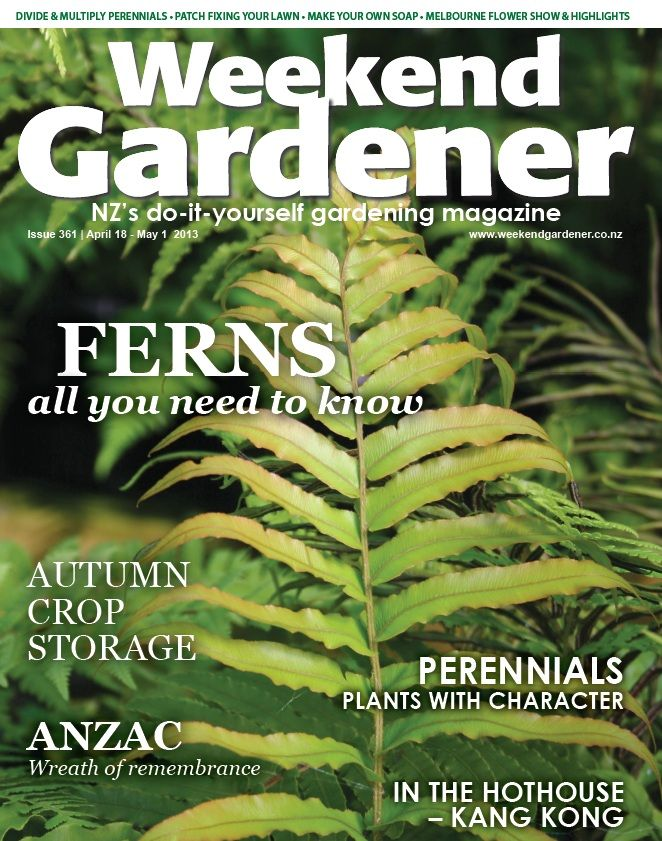 WG #361 includes all you need to know about ferns, how to make a wreath of remembrance for ANZAC day, and instead of throwing away the weeds – we see which ones are edible! Mmmm…chickweed salad!!