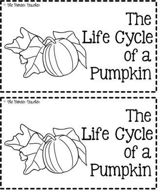 Free Life Cycle of a Pumpkin Booklet- Teach or review the stages of a pumpkin's life cycle with this 7-page black and white booklet.