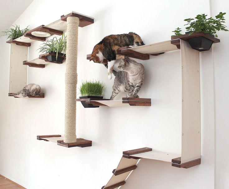 Arredamento gatti ~ 21 migliori immagini catification su pinterest a casa alberi