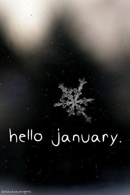 11 Best January Images On Pinterest January Seasons Of