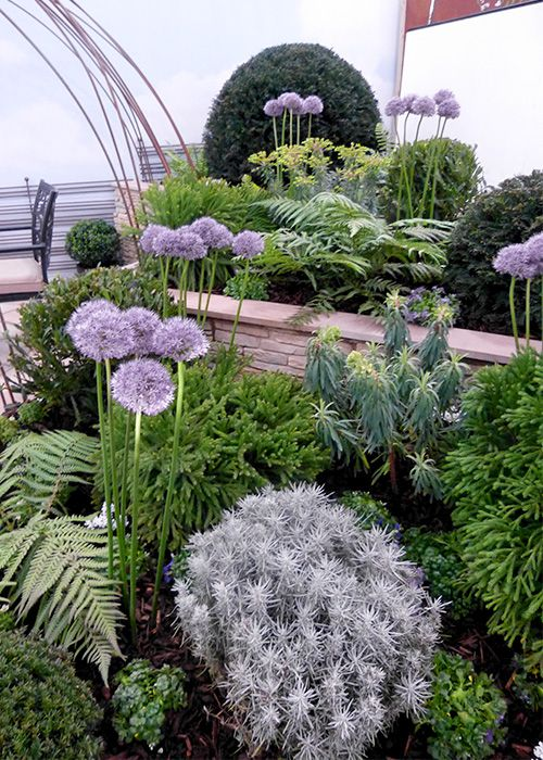 Garden By The Bay Flower Show best 10+ small garden trees ideas on pinterest | london garden
