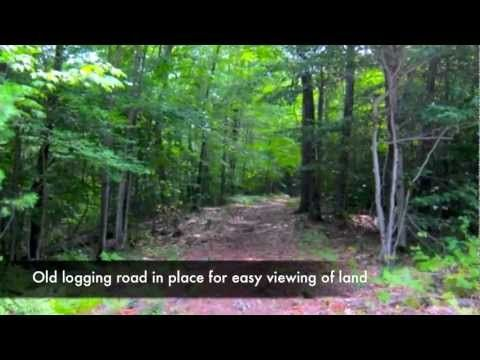 Lot 26 South Pond Shore Lane | Greenwood Maine Real Estate | near Bethel, Maine - YouTube