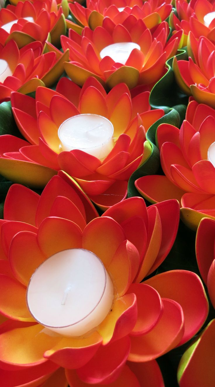 28 best love the dazzle images on pinterest light led base and orange lotus flowers masses on a table izmirmasajfo