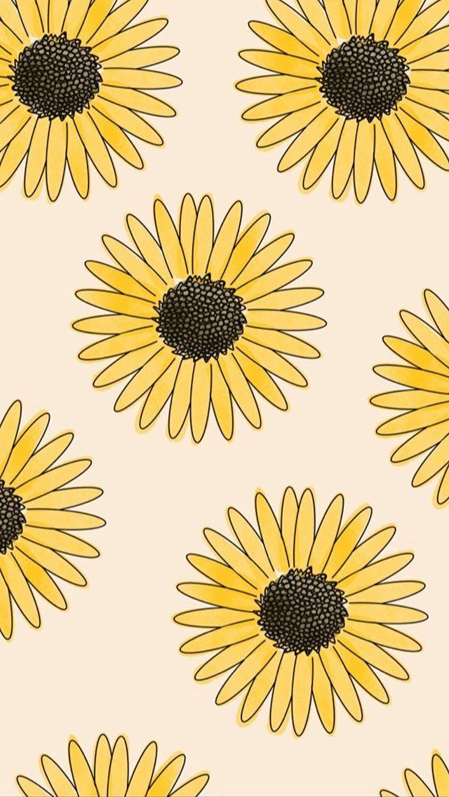 Google Image Result For Https Data Whicdn Com Images 335212520 Original Jpg Floral Wallpaper Iphone Sunflower Wallpaper Wallpaper Iphone Cute