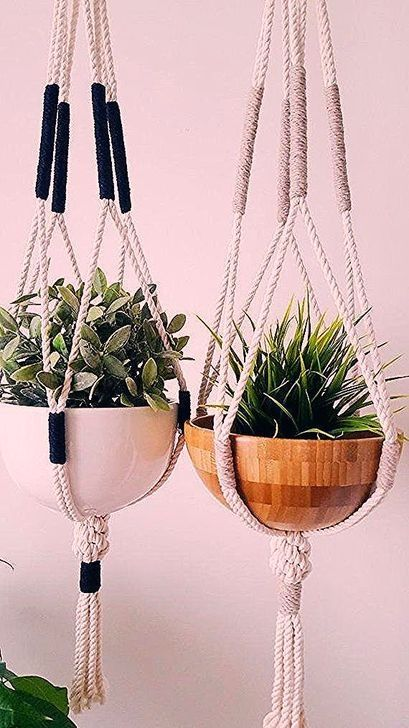 47 Wonderful Diy Window Hanging Plants
