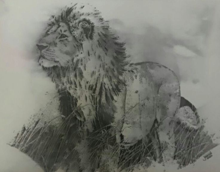Lion.... One of Africas Big five. Medium: Black Rotring Ink Pen Technique: Stippling Size A3 Available