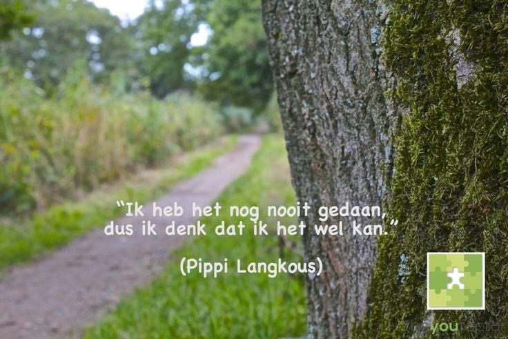 De wet van Pippi