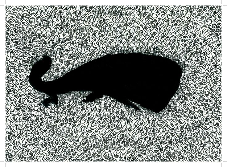 The shadow of Moby Dick......Stylo.