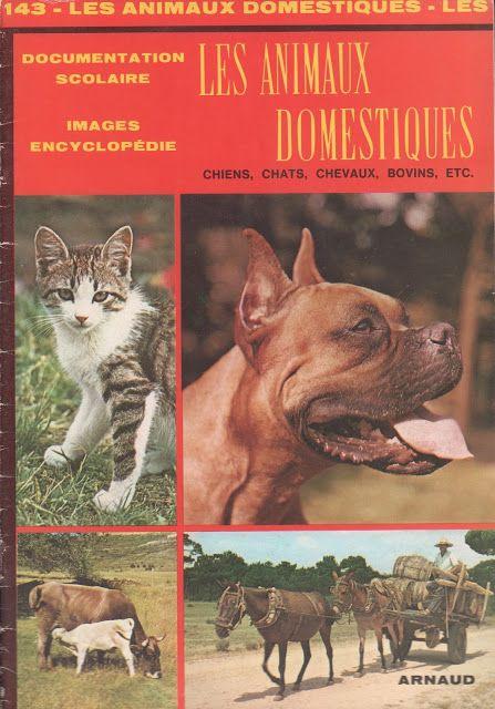Documentation scolaire 143 : Les animaux domestiques