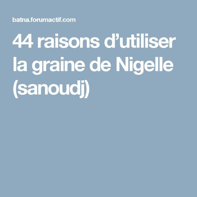 44 raisons d'utiliser la graine de Nigelle (sanoudj)