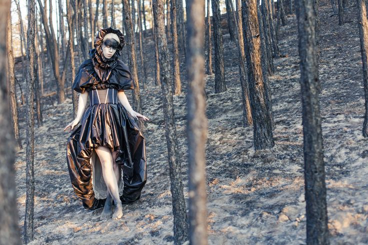photoshooting in a burnt forest