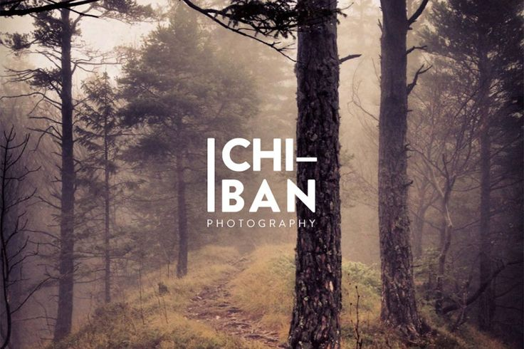 Ichiban is a WordPress theme build especially for professional photographers who want to bring their presence online in a sleek, elegant way. Featuring a clean, unique, elegant design and typography, Ichiban is guaranteed to bring a pleasant reading experience to your visitors.