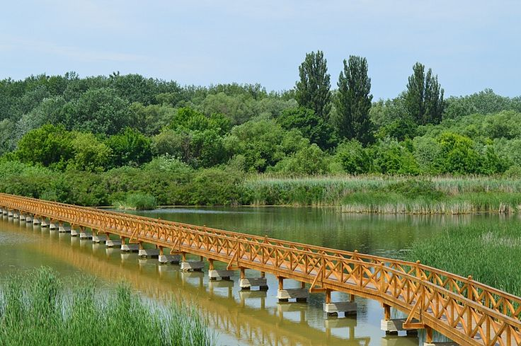 Tiszalöki holtág, Hungary
