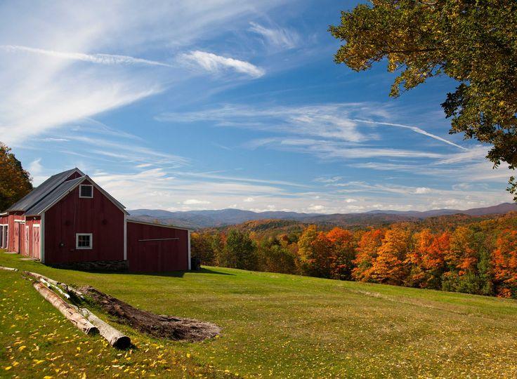 Where Is Springer Mountain Farms