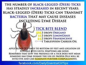 doterra essential oils for tick bites - Bing images