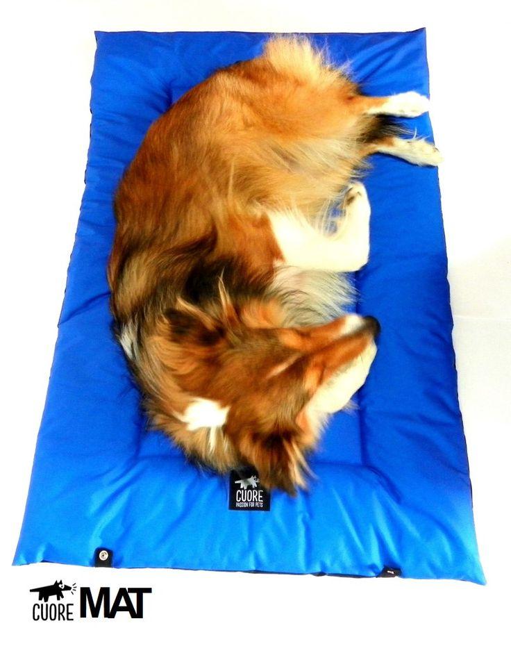 Nighty night #cuore #dogmat #style #instagramdogs #photooftheday #dogbeds #madewithlove #beautiful #passionforpets #shetlandsheepdog #love #dog #dogoftheday #pets #petbeds #mascotas #petlovers #animals #petsagram #dogsofinstagram #sheltie #shetland