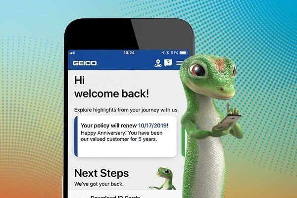 Geico Marine Insurance Card Top Understand The Background Of Geico