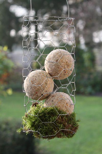 Jeg synes ikke så godt om de grønne net omkring mejsekuglerne, så dem tager jeg af. Så er jeg i øvrigt også fri for at de flyver rundt i hel...