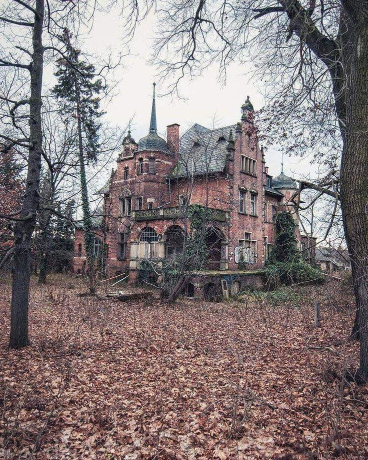 Abandoned But Beautiful All The Same. In 2020