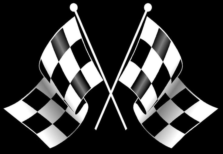 http://doblelol.com/uploads/11/race-car-checkered-flag-funny.jpg