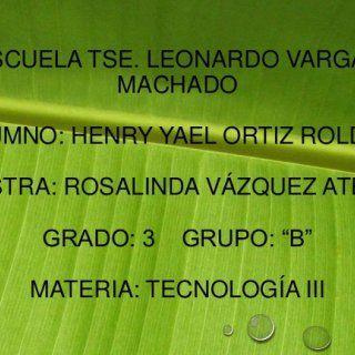 """ESCUELA TSE. LEONARDO VARGAS MACHADO ALUMNO: HENRY YAEL ORTIZ ROLDAN MAESTRA: ROSALINDA VÁZQUEZ ATENCO GRADO: 3 GRUPO: """"B"""" MATERIA: TECNOLOGÍA III   INNOV. http://slidehot.com/resources/innovacion-tecnica-y-desarrollo-sustentable.45812/"""