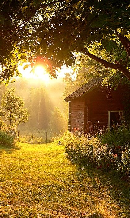 Country Sunbeams http://minivideocam.com/landscapephotography