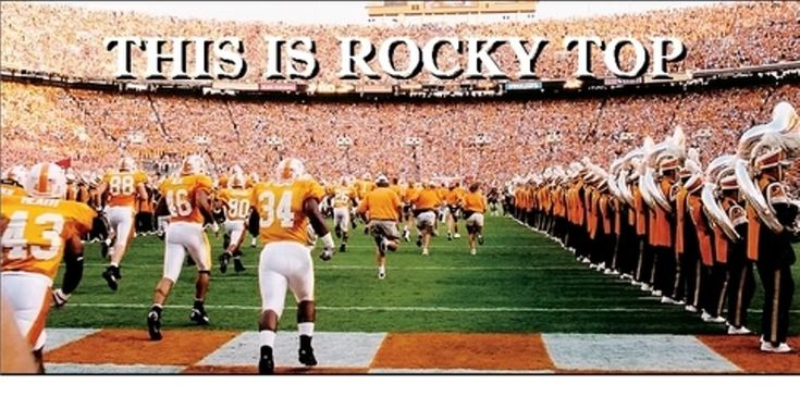 Funny Tennessee Vols   tennessee vols graphics and comments