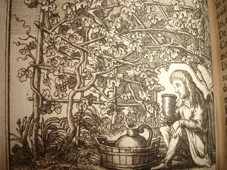 REPRESENTATIONS DE CES DIX-SEPT PREMIERES GRAVURES: Après le frontispice, les portraits deMore,Erasme et Holbein, la page de titre, suivent les graures suivantes:La folie preche en chaire,le sophiste marchant sur des épines,le savant(erasme),la paysanne et la belle, Midas aux oreilles d'ane,la chevre Amalthée allaitant jupiter enfant, le vieux stoique et la jeune belle, les deux nourrices de la folie Methe et Apaedia, fou obèse tenant une saucisse,Bachus sous la treille, danse de Polyph...