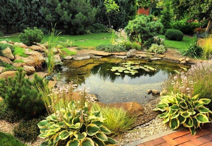 Gartenteich, Fischteich, Wasserpflanzen, Garten, Gartengestaltung,  Gartenideen, Wasser, Teich,