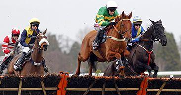 #Free Tickets to #Horseracing at Ascot - Friday 18 November #Freebie