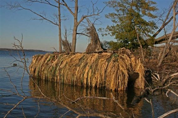 Avery Outdoors Killerweed Duck Boat Camo Blind Kit At