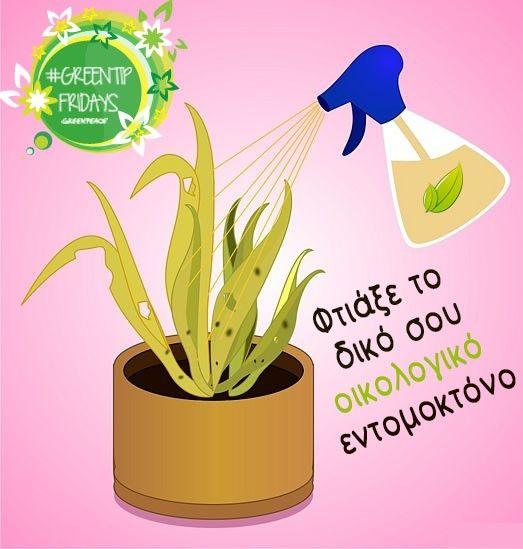 Για να απαλλαγείς από τα έντομα φυτών στον κήπο ή στις γλάστρες σας χωρίς τη χρήση φυτοφαρμάκων, μπορείς να παρασκευάσεις το δικό σου οικιακό εντομοκτόνο.Σαπούνι Διαλύεις 50 γραμμάρια σαπούνι και 1 κουταλιά οινόπνευμα σε 1 λίτρο ζεστό νερό και ψεκάζετε.Καυτερές πιπεριές Βράζεις 2-3 καυτερές πιπεριές μαζί με μισό κρεμμύδι κ