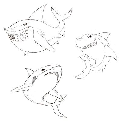 Free download - Drawings of Sharks