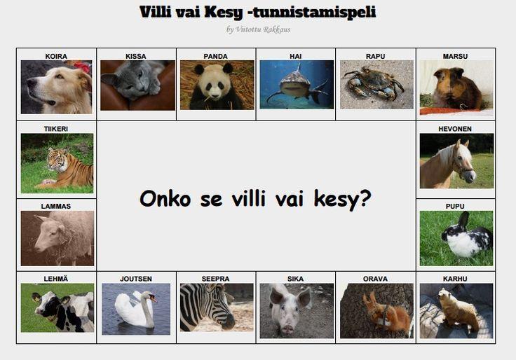 harjoitellaan tunnistamaan villi- ja kesyeläimiä. Aikuinen voi vaikkapa kertoa aina kustakin eläimestä jotain.