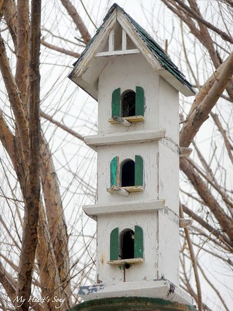 Bird Apartment....Even w/ Green Shutters.... Opens in back to allow for cleaning... 2 levels YESSSS