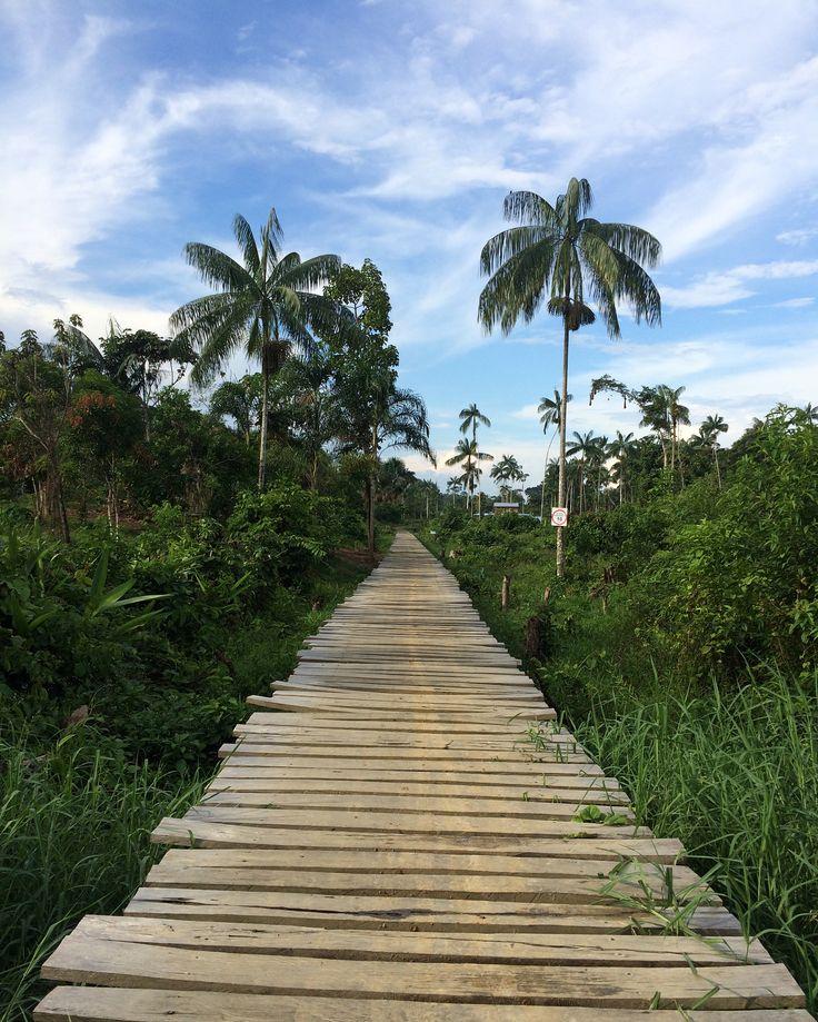 Frontera con Brasil #Manguaré #Amazonas #Colombia