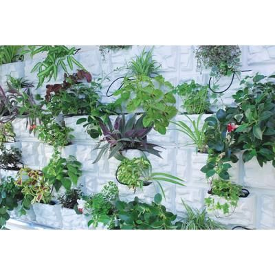 270 Best Images About Raisedbeds Vertical Gardening Or