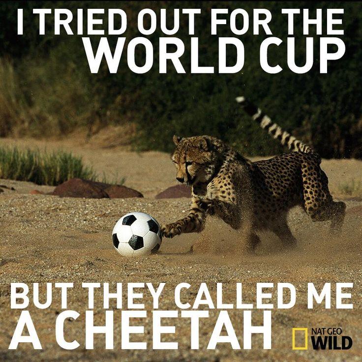 Nat Geo Wild #WorldCup
