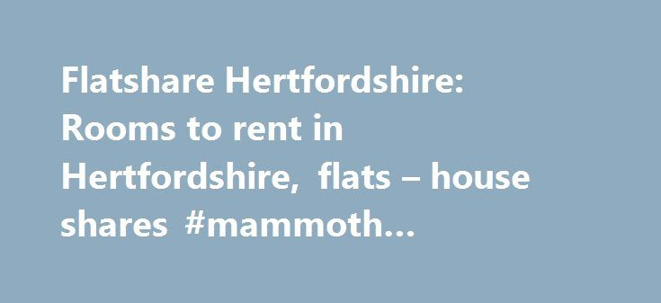 Flatshare Hertfordshire: Rooms to rent in Hertfordshire, flats – house shares #mammoth #mountain #rentals http://renta.nef2.com/flatshare-hertfordshire-rooms-to-rent-in-hertfordshire-flats-house-shares-mammoth-mountain-rentals/  #flat rent uk # Hertfordshire Flatshare, houseshare, rooms to rent, flats & houses to let 30 wanted ► Double room to let in Broxbourne: High Rd, EN10 High Road, Broxbourne, EN10 – 9 miles east Hi, I have a double room available in 3 bedrooms house with 1 bathroom and…