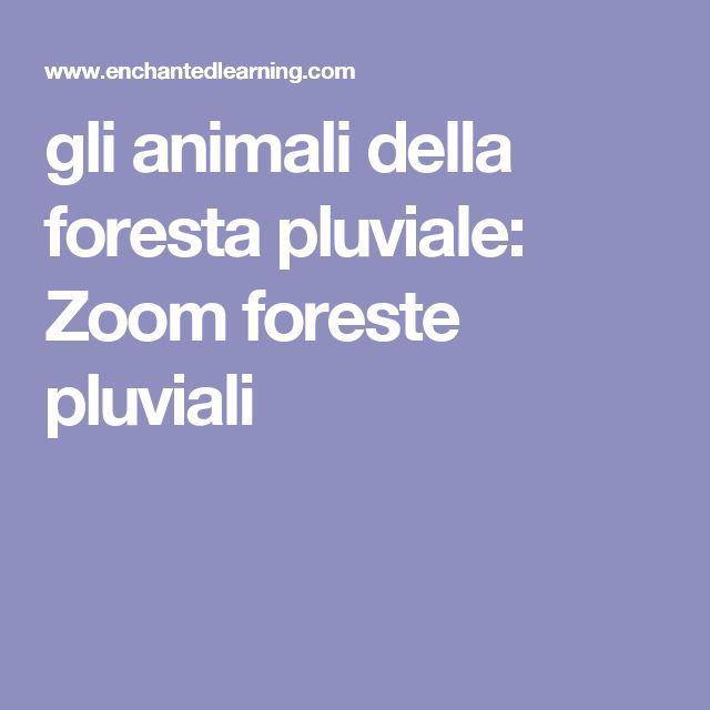 gli animali della foresta pluviale: Zoom foreste pluviali