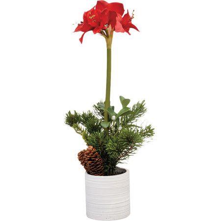 Faux Red Amaryllis