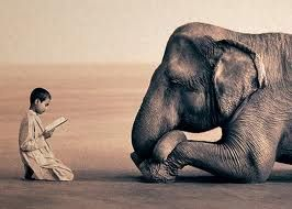 Greg Colbert captures the relationship between humans and animals