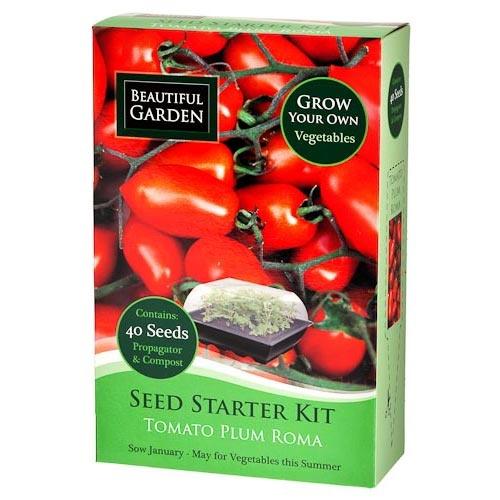Plum Tomato Seed Starter Kit | Poundland