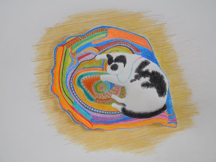 Coloured pencil rendition of my cat resting on a french knitted rug made by my husband Peter. 2016.