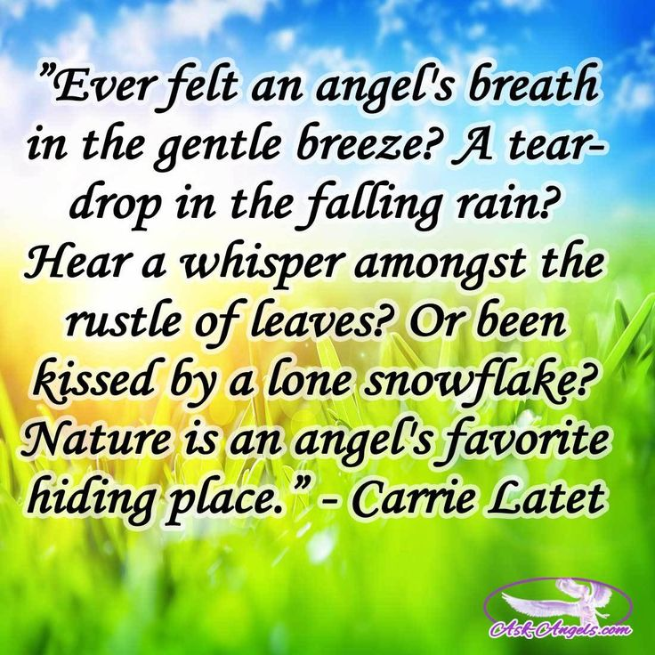 """Ever felt an angels's breath in the gentle breeze? A teardrop in the falling rain? Hear a whiper amongst the rustle of leaves? Or been kissed by alone snowflake? Nature is an angel's favorite hiding place."" -Carrie Latet  #angelsbreathe #teardrop #fallingrain #angel"