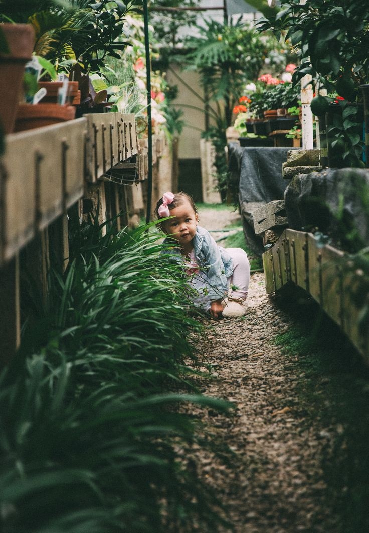 Greenhouse Children's Session: Kentucky  Elizabeth Withers Photography