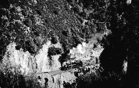 Aerial view of Walhalla train on a hillside track, 1906.Museum Victoria, Australia