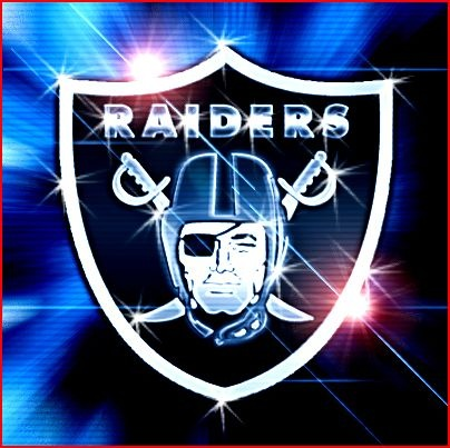 Shiny Raiders Shield