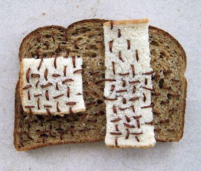 Catherine McEver | Boro Bread, Sashiko Stitching