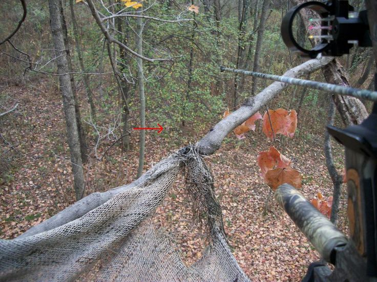 Deer Stands | Stand action (no harvest) : Ohio • Deer & Deer Hunting Forums